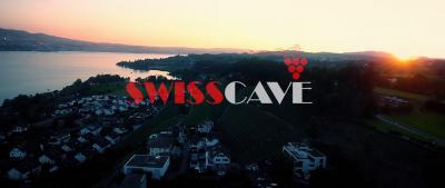 SWISSCAVE Event 2016