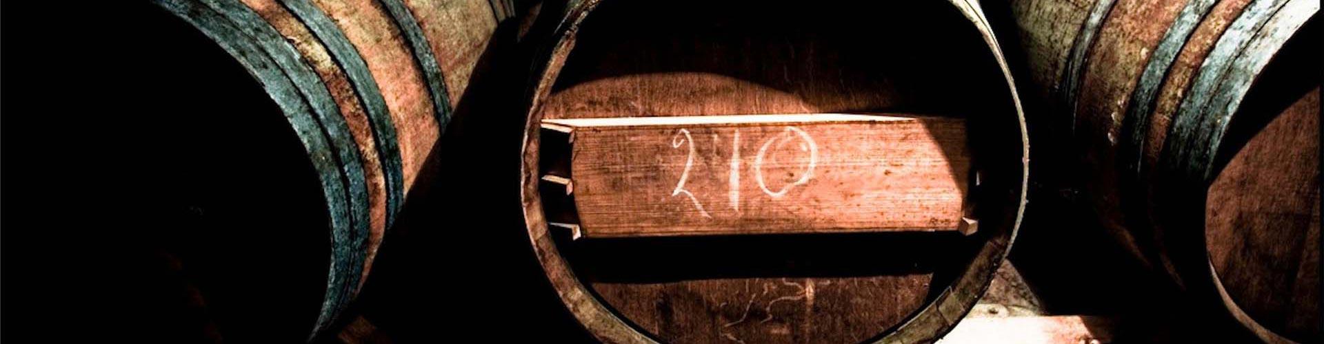 Three barrels of wine lying side by side in the shelf